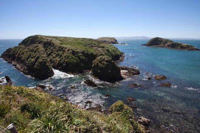 Islotes de Punihuil, Isla Chiloe, Chile