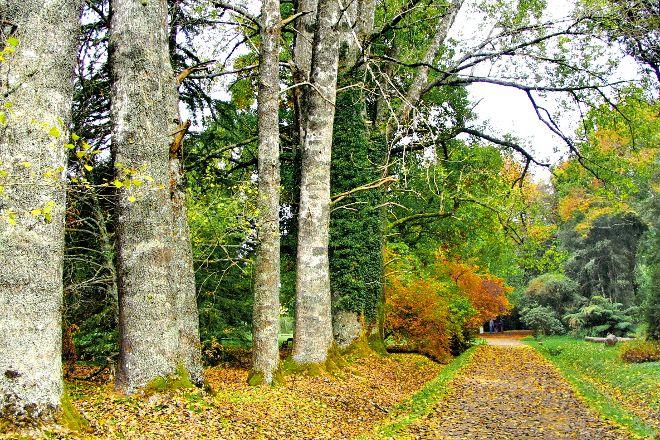 Jardin Botanico de la Universidad Austral de Chile, Valdivia, Chile