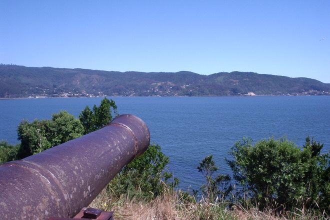 Mancera Island, Valdivia, Chile