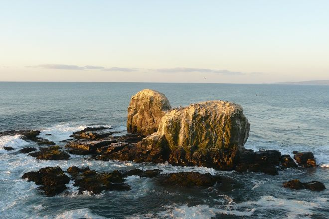 Punta De Lobos, Pichilemu, Chile