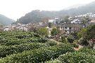 Hangzhou Longjingshan Tea Cultural Village