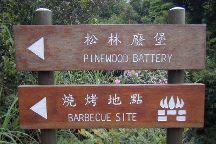 Pinewood Battery, Hong Kong, China