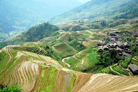 Dragon's Backbone Rice Terraces, Longsheng County, China