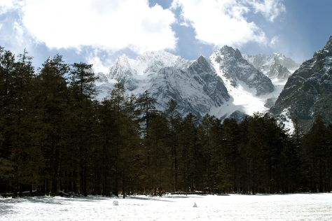 Lijiang Spruce Plain, Yulong County, China