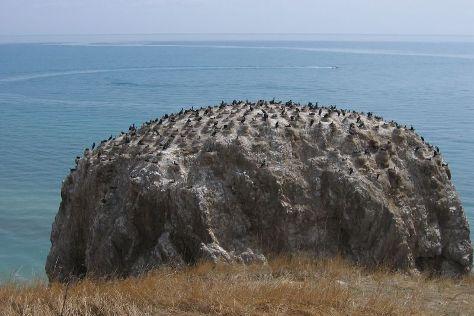 The Birds Island, Gangcha County, China
