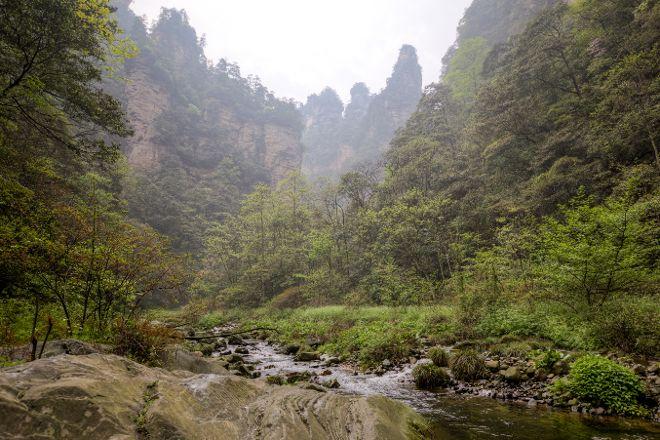 Golden Whip Brook, Zhangjiajie, China
