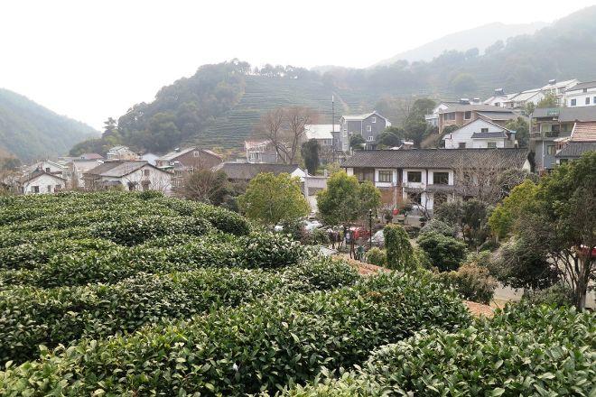 Hangzhou Longjingshan Tea Cultural Village, Hangzhou, China