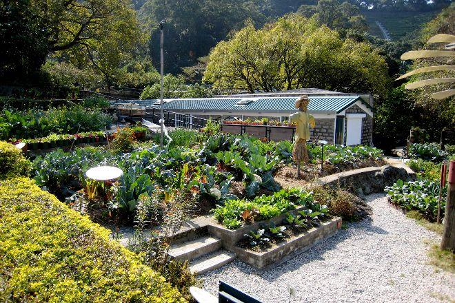Kadoorie Farm and Botanical Gardens, Hong Kong, China