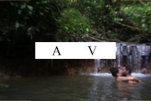 Amazon Jungle Trips