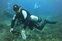 Cartagena Divers
