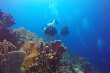 Diving Planet, Cartagena, Colombia