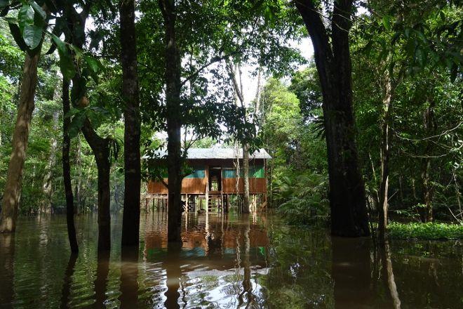 Amazon Maguta Jungle Lodge, Leticia, Colombia