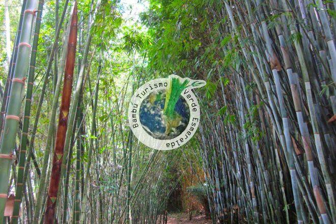 El Paraiso del Bambu y La Guadua, Montenegro, Colombia
