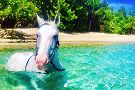 Caribe Horse Riding Club