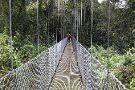 Everywhere Costa Rica