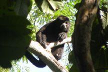Cartagena Canopy Tour, Tamarindo, Costa Rica