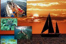 Sea Bird Sailing Excursions