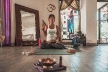 SER Om Shanti Yoga Studio