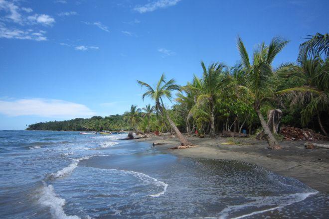 Gecko Trail - Day Tours, Puerto Viejo de Talamanca, Costa Rica