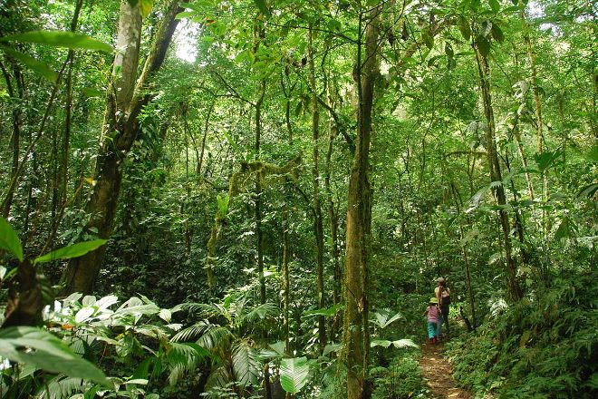 Hacienda Ebano, Baru, Costa Rica