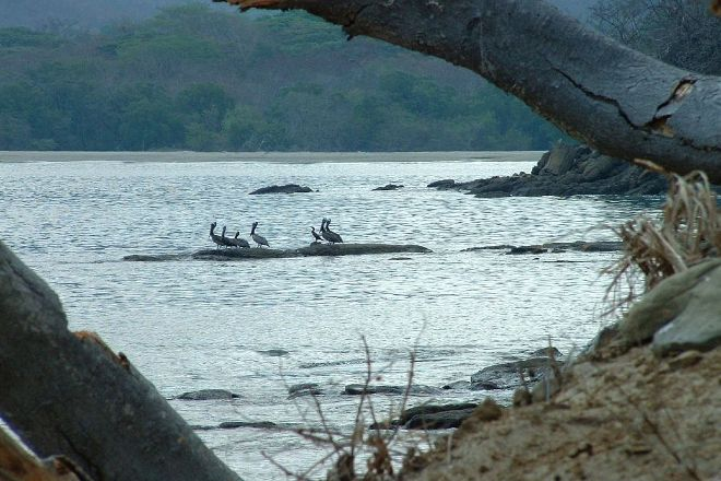 Junquillal Bay Wildlife Refuge, Cuajiniquil, Costa Rica