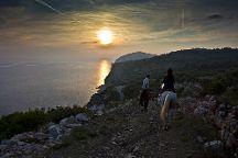 Kojan Koral, Dubrovnik, Croatia