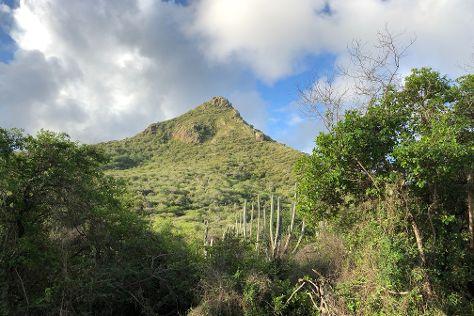 Christoffelpark, Sabana Westpunt, Curacao