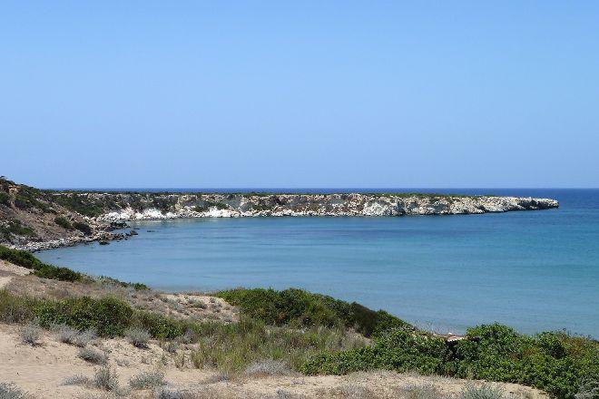 Lara Bay Turtle Conservation Station, Paphos, Cyprus