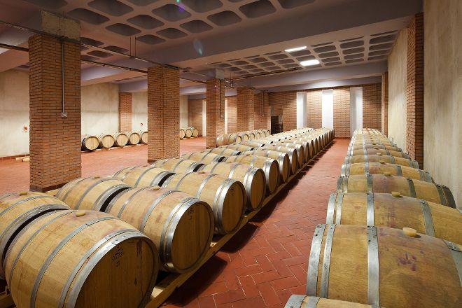 Vasilikon winery, Paphos, Cyprus