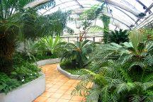 Botanicka Zahrada (Hortus Botanicus), Brno, Czech Republic