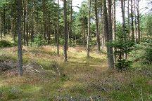 Thy National Park, Hurup, Denmark
