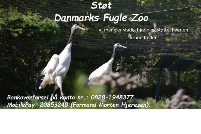 Denmarks Bird Zoo, Tommerup, Denmark