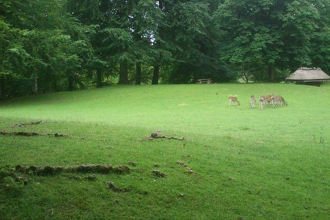 Marselisborg Deer Park, Aarhus, Denmark