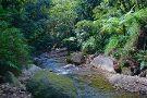 Breakfast River