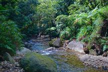 Breakfast River, Morne Trois Pitons National Park, Dominica