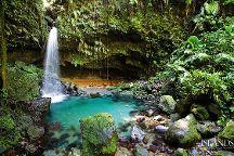 Sweet Dominica