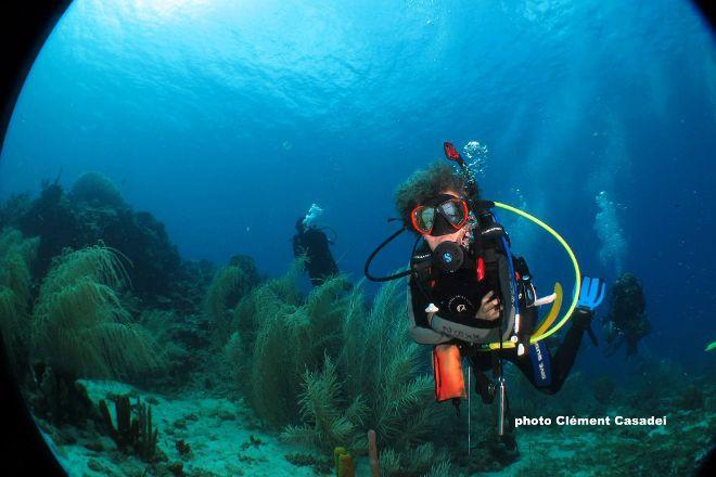 East Carib Dive, Salisbury, Dominica