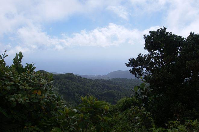 Morne Nichols, Morne Trois Pitons National Park, Dominica