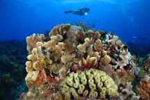 Dressel Divers Dive Center