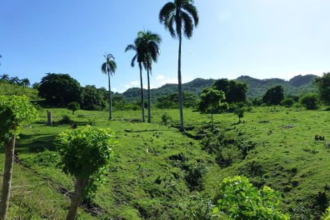Rancho Los Cacaos, Maimon, Dominican Republic