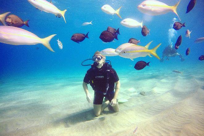 Dive Cabarete, Sosua, Dominican Republic