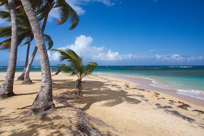 Playa Las Ballenas, Las Terrenas, Dominican Republic