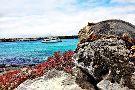 Galapagos Deep