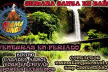 MAMA TUNGU, Amazonic Tours