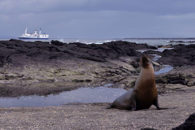 Galapagos Aquatours, Puerto Ayora, Ecuador
