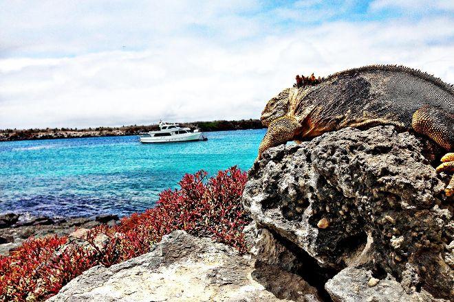 Galapagos Deep, Santa Cruz, Ecuador