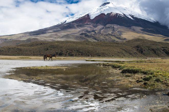 Latin Adventures, Quito, Ecuador