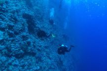 3WILL diving center