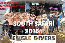 Eagle Divers Egypt