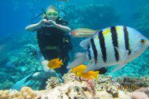 Hurghadareisen Day Tours, Hurghada, Egypt